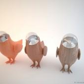 Marina's birds